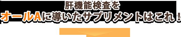 肝パワーEプラス supple-title[1]