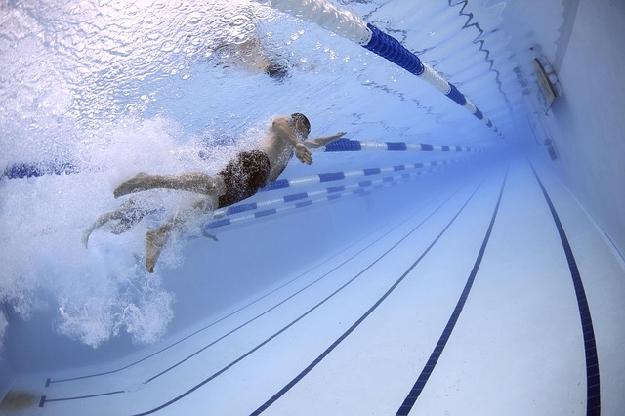 水泳の運動
